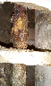 Ristrutturazioni e colonne montanti acqua